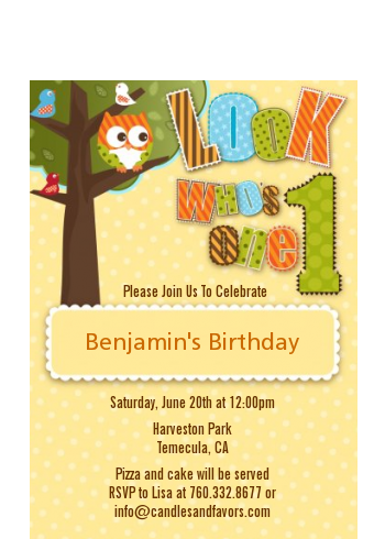 Look Who's Turning One Owl - Birthday Party Petite Invitations
