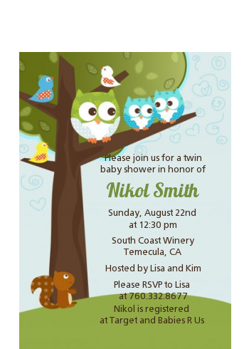 Owl - Look Whooo's Having Twin Boys - Baby Shower Petite Invitations