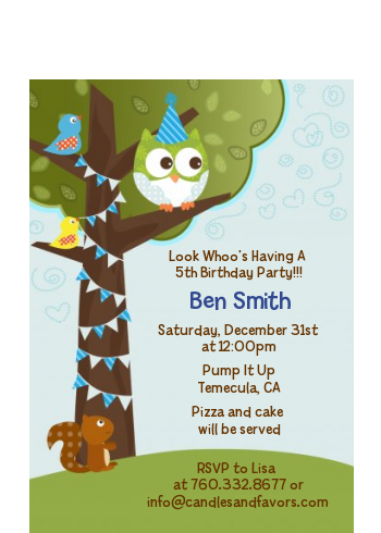 Owl Birthday Boy - Birthday Party Petite Invitations