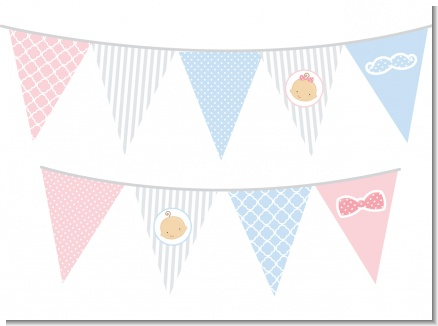 Gender Reveal - Baby Shower Themed Pennant Set