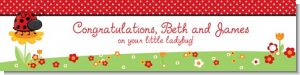 Modern Ladybug Red - Personalized Baby Shower Banners