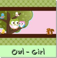 Owl Girl Birthday Party Theme