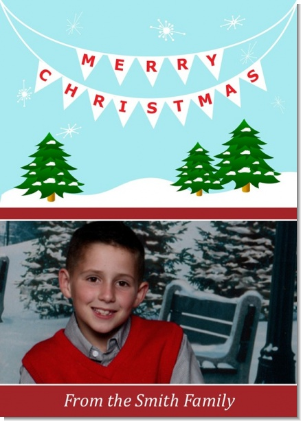 Winter Wonderland - Personalized Photo Christmas Cards